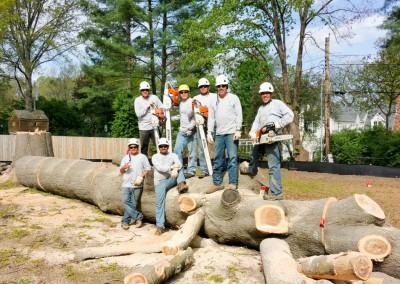 Employees On Oak Tree
